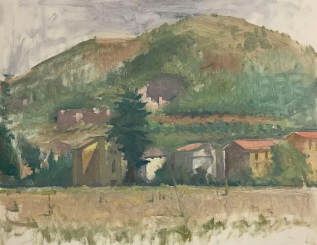 Langdon Quin,<em> Mocaiana</em>, oil on canvas board, 35x45cm, 2009