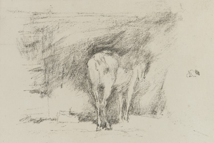 Study of a Horse 1895