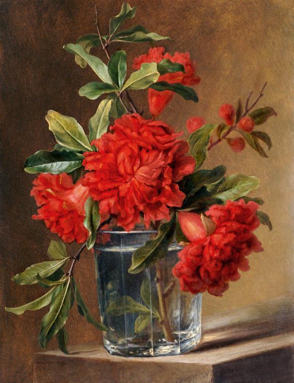 Gerard Van Spaendonck red carnation