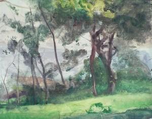 landscape60s