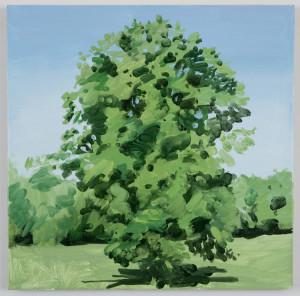 lone-tree-large