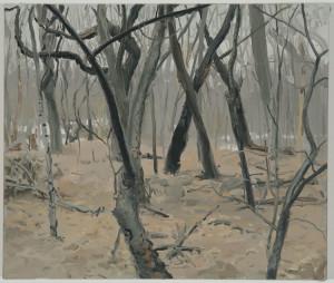 woods-large