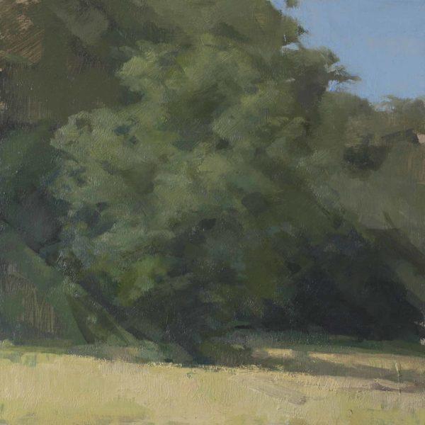"""Tree, Oil on panel, 12 x 12"""" 2016"""